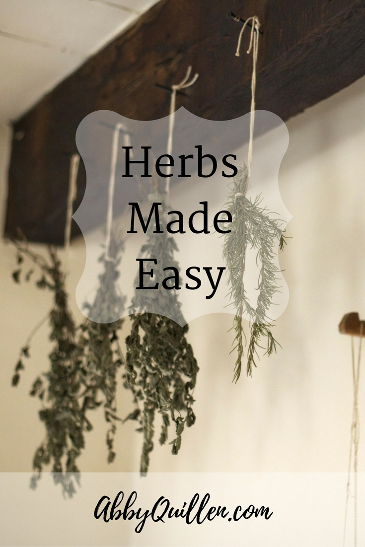 Herbs Made Easy #health #alternativemedicine