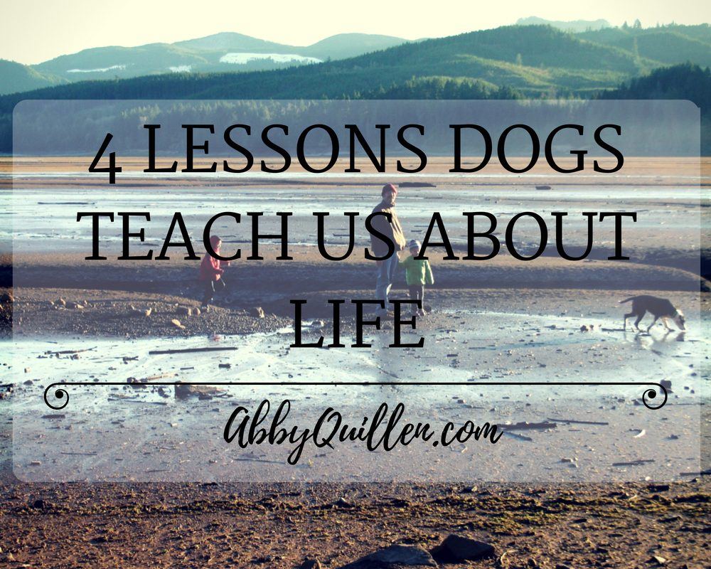 4 Lessons Dogs Teach Us About Life