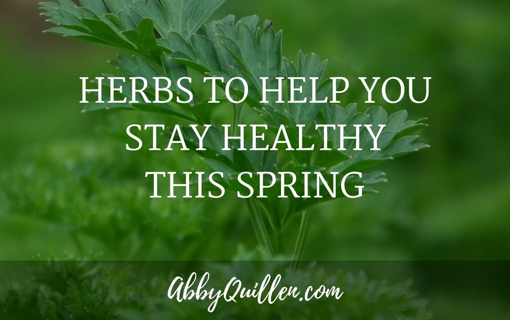 Herbs to Help You Stay Healthy This Spring
