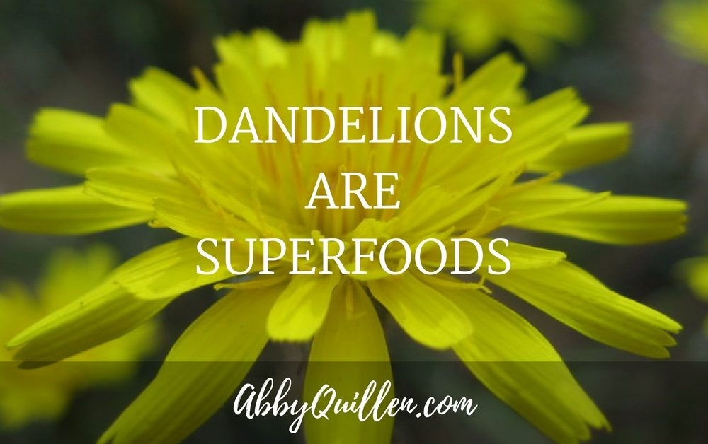 Dandelions are Superfoods